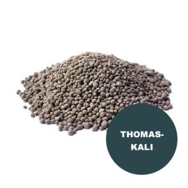 Thomaskali